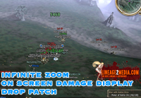 infinte zoom on screen damage display drop patch lineage 2